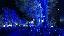 #ไฟหิ่งห้อย ประดับประดาตามต้นไม้ สวยงามน่าหลงใหล