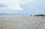 น้ำลดเหลือแต่ทราย
