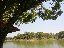 ภาพที่ 1  สวนสาธารณะ ร.๙  จ.นครพนม